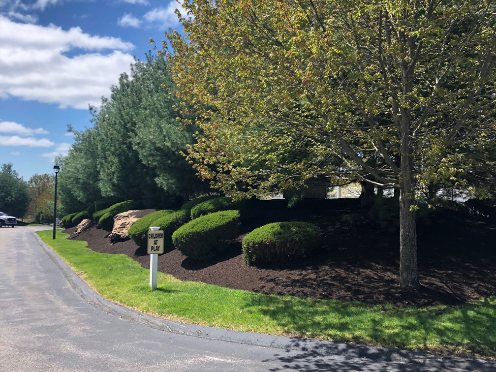 Niantic CT Commercial Landscaping Mulch Installation